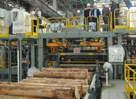 Лесопильный завод RFP Group начал работу в тестовом режиме